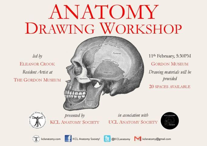 anatomy-drawing-workshop