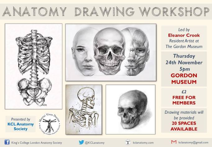 anatomy-drawing-workshop-nov16
