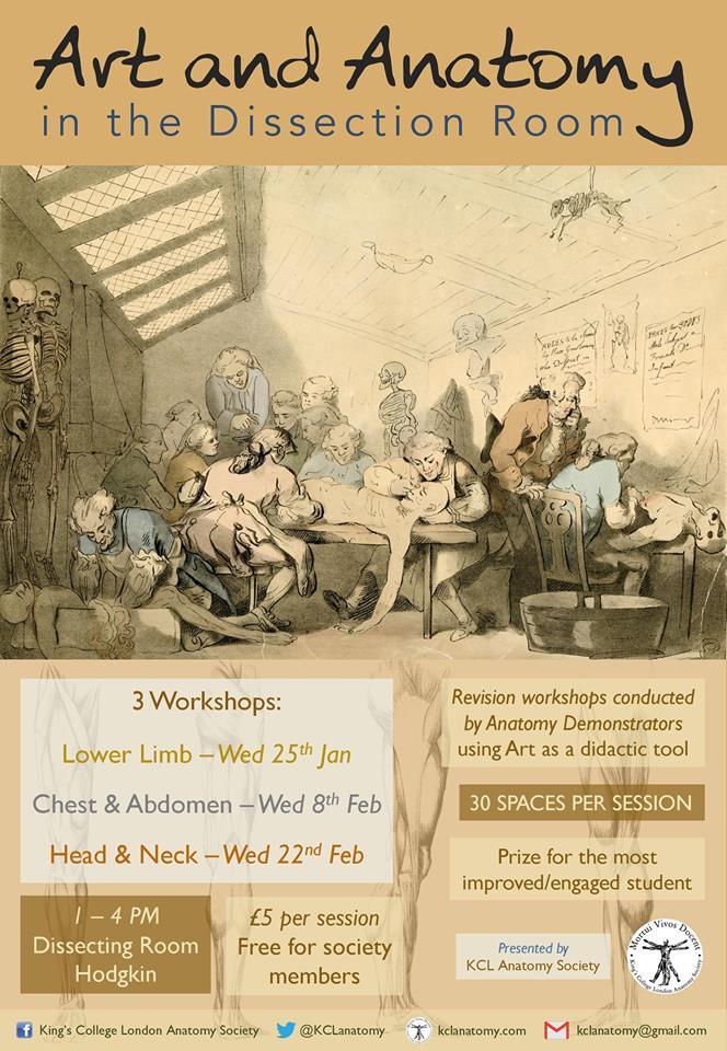 art-and-anatomy-workshop