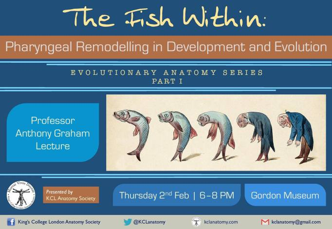 The fish Within