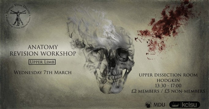 Upper Limb Workshop